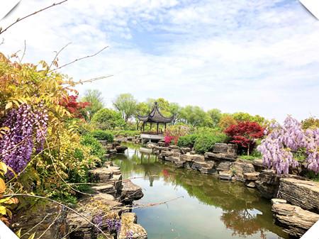 为什么上海最便宜的公墓风水影响子孙后代